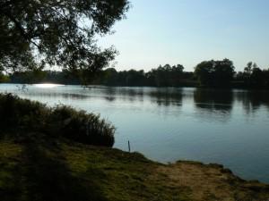 Les rives de Saône