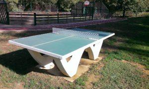 """Ping-pong au """"citypark"""" au centre du village de Mogneneins"""
