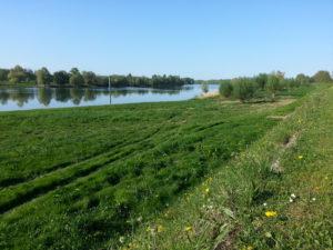 La Saône au cœur de Mogneneins