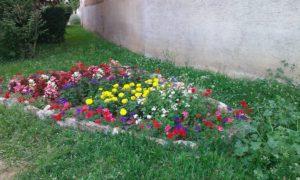 Massif de fleurs à Mogneneins au hameau de Flurieux